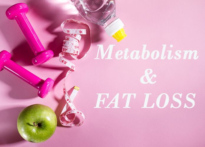 Metabolism and fat loss