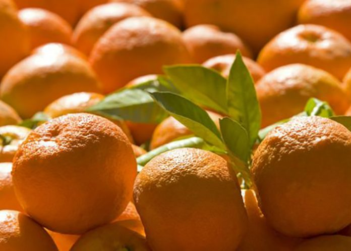bitter orange benefits